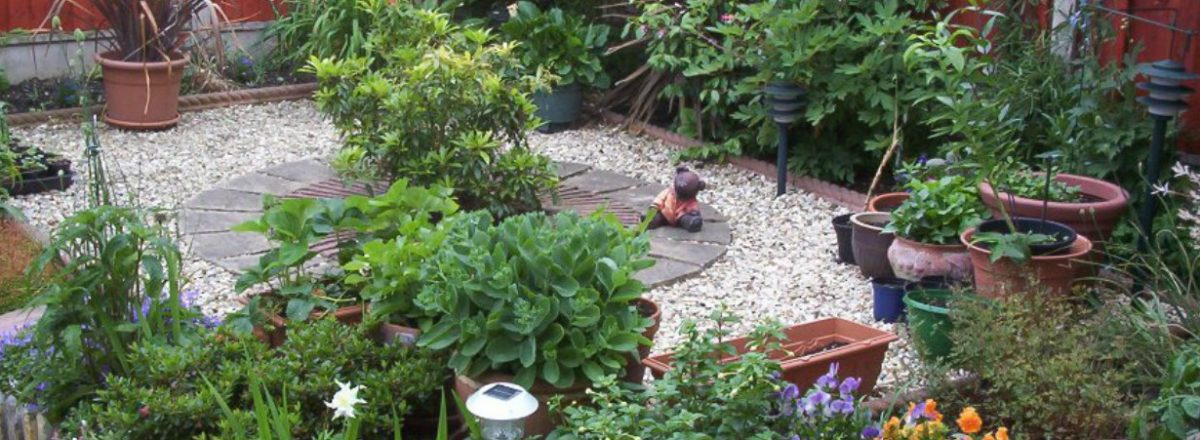 Garden Maintenance - Roy's Garden Services