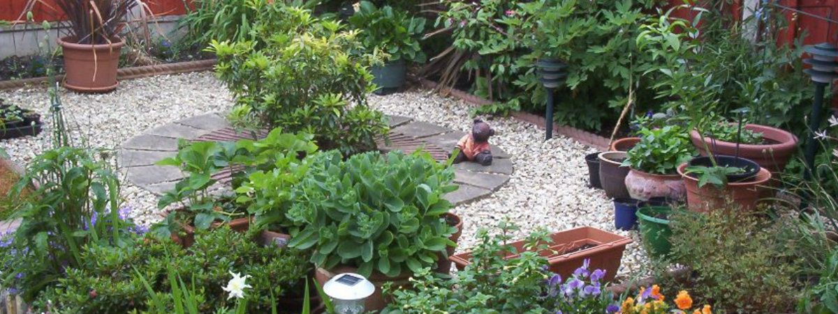 Garden Maintenance - Roy's Garden Services
